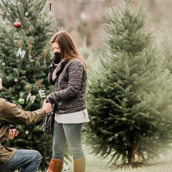 Huwelijksaanzoek met kerst? Yes!