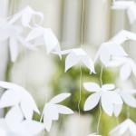 Backdrop  Wit Oragami Flower