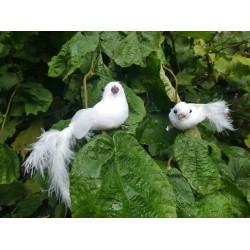 Set van decoratieve duifjes
