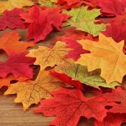 Confetti herfstbladeren decoratief